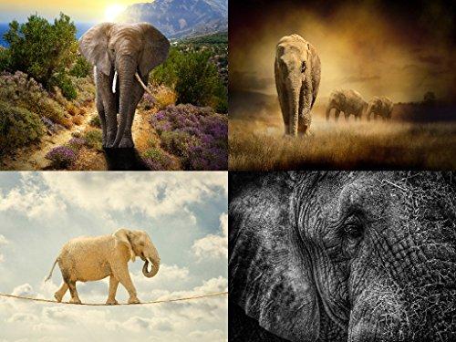 Lais Puzzle Elefantes Collage 500 Piezas