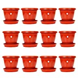#3: Gamla/Planter/Pot 8-inch (Pack of 12 Pots) (Red/Terracotta Colour Pot) with Bottom Plate/Tray (12 PC's) (Tray Colour Terracotta/red) for Garden Balcony Flowering Pot by Kraft Seeds