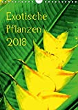 Exotische Pflanzen (Wandkalender 2018 DIN A4 hoch): Exotische Pflanzen aus Hawaii (Monatskalender, 14 Seiten ) (CALVENDO Natur) [Kalender] [Apr 01, 2017] Brun, Annina