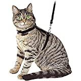 Ducomi® Silvestro - Pettorina Regolabile e Guinzaglio 105 cm in Nylon per Gatti, Conigli e Cuccioli (Black)