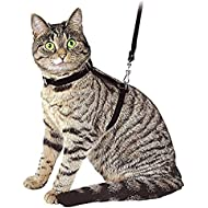 Ducomi Silvestro - Adjustable Nylon Lead Leash Harness for Cats, Kittens, Rabbits and Puppies - Walking Harness Collar Small Animal Pet Body Harness 105 cm (Black)