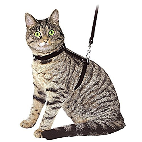 ducomi® Sylvester – Nylon Lead Leash Harness Adjustable and 105 cm for Cats, Rabbits and Puppies -  Black -  One Size