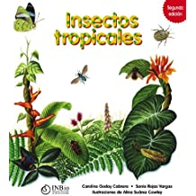 Insectos Tropicales / Tropical Insects