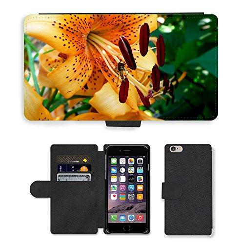 Just Mobile pour Hot Style Téléphone portable étui portefeuille en cuir PU avec fente pour carte//m00139091Fleur Beauté insectes Fly/Beetle/Apple iPhone 6Plus 14cm