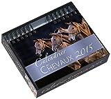 Image de Calendrier des chevaux 2015