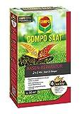 COMPO SAAT® RasenReparaturMix Samen&Dünger, Rasenpflege zum Säen und Düngen in einem Arbeitschritt, für eine gelungene Rasenreparatur, 1,2 kg für 50 m²