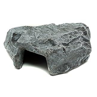 Komodo Rock Den 514NiQMuXrL