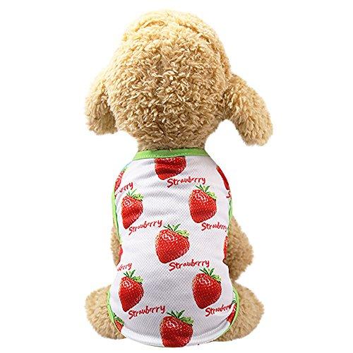 (EUZeo Haustier Paare Pet Kleidung Kleid Lovely Hundebekleidung Sommer Casual Welpen Hund Prinz Schöne Ananas/Erdbeer Weste Haustierpullover Hundeshirts Hundepullover)