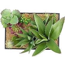 suchergebnis auf f r zimmerbrunnen mit pflanzen. Black Bedroom Furniture Sets. Home Design Ideas