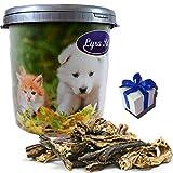 5 kg Rinderdörrfleisch Lyra Pet Kausnack Belohnung Hund in 30 L Tonne + Geschenk