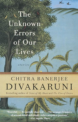The Unknown Errors of Our Lives Paperback