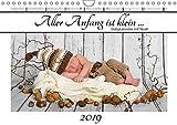 Aller Anfang ist klein - Babykalender mit Noah (Wandkalender 2019 DIN A4 quer): Mit Newborn Noah durch das Kalenderjahr (Geburtstagskalender, 14 Seiten ) (CALVENDO Menschen)