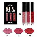 Lippenstift Matt, HUIHUI 3pcs Liquid Lipstick Set Schönheit Lippe Gloss Long Lasting Moisturizing Lippenstift Lip Gloss Fashionable Colors Matte Liquid Lipstick (B)