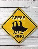 Mentalsign oche Xing mini metallo giallo caution Goose Crossing Farm Sign 15,2x 15,2cm
