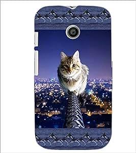 PrintDhaba Kitten D-5687 Back Case Cover for MOTOROLA MOTO E (Multi-Coloured)