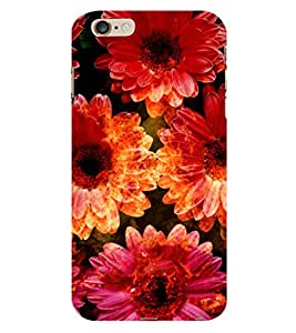 ifasho Designer Phone Back Case Cover Apple iPhone 6 ( Indian Art Work Good Luck Charm )