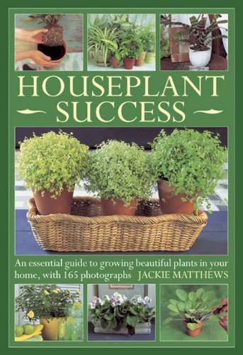 houseplant-success-an-essential-guide-to-growing-beautiful-plants-in-your-home