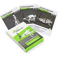 eaglefit® Sling Trainingskarten für Sling Trainer, Geschenk für Schlingentrainer-Fans!