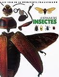 Royaume des insectes