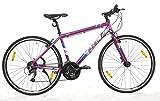 Szel Bicycle Grafit - 24 Speed