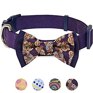 Blueberry-Pet-7-Patterns-Soft-Comfortable-Paisley-Flower-Print-Padded-Dog-Collar-4-Patterns-Handmade-Detachable-Bow-Tie-Collar-or-One-Bowtie-Set