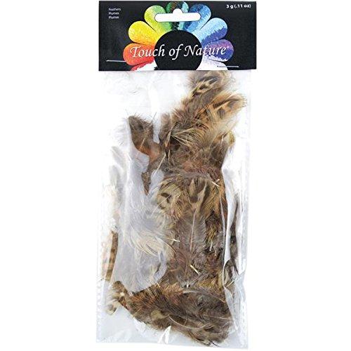 Fagiano striscia naturale piume 3 grammi/Pkg-