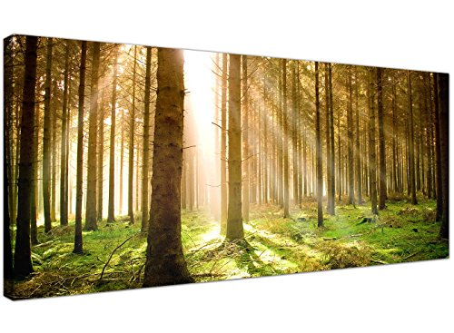 Modern Canvas Prints of Forest Trees for your Dining