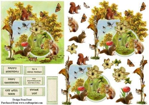 Scrapbook scoiattolo rosso di Frances Dent