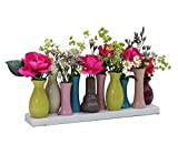 Keramikvasenset Blumenvase Keramikvasen bunt Vase Blumen Pflanzen Keramik Set Deko Dekoration (10 Vasen, bunt)