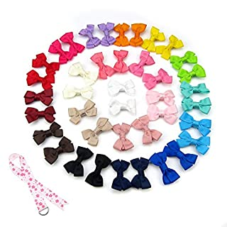 Alfie Pet by Petoga Couture - Perrin Hair Clip 40-Piece Set for Dogs, Cats and Small Animals