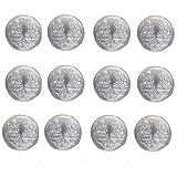 Best Pure Silver LAXMI Ganesh Ganesha Lakshmi Pooja Good Luck Silver Coin 12PC