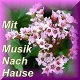 Mit Musik Nach Hause - Echte Volks- Heimat Und Blasmusik - Brass - Bavaria - Bayern
