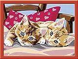 Ravensburger Malen nach Zahlen 28342 - Zwei Schmusekätzchen, Malset hergestellt von Ravensburger Spieleverlag