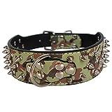 Dogs Kingdom Leder-Hundehalsband mit Nieten 50,8cm–66cm Länge