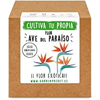 Garden Pocket - Kit cultivo AVE DEL PARAISO