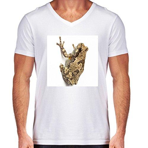 camiseta-blanca-con-v-cuello-para-los-hombres-tamano-l-hyla-versicolor-by-loki1982