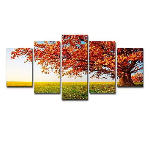 ruck Kein Foto-Rahmen Wand Kunst-5 Stück Kombination Fall Verlässt Park Lawn Freizeit Hintergrund Wand Wohnzimmer Restaurant Büro,L ()