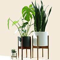 Fox & Fern Mid-Century Modern Plant Stand - Cherry - EXCLUDING 20cm White Ceramic Planter Pot