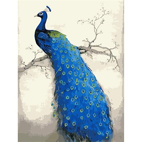 Vazelu Leinwand Gemälde Pfau Frameless Bild Auf Wand Acryl Ölgemälde Durch Zahlen Abstrakte Zeichnung Nach Zahlen Einzigartiges Geschenk 40x50cm (16 * 20')