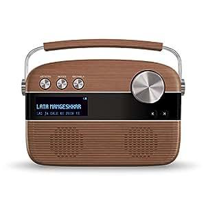 Saregama Carvaan Portable Digital Music Player Amazon In