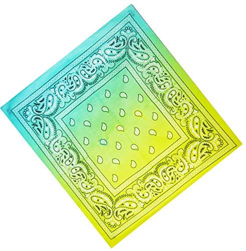 Unbekannt Bandana Kopftuch Halstuch Nickituch Biker Tuch Motorad Tuch verschied. Farben Paisley Muster (Grün-Gelb Double)