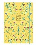 Collins Blossom 2019-2020 - Agenda (A5