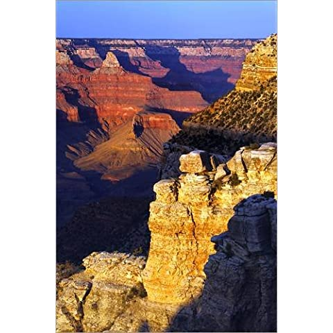 Stampa su legno 20 x 30 cm: South rim of the Grand Canyon di Adam Jones / Danita Delimont