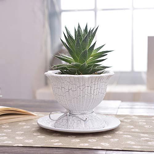 TOL MY Keramik Blumentopf Dekoration, nordischen Stil fleischigen kreative Blumentopf kleinen grünen Kaktus Keramik Blumentopf Schreibtisch Oberfläche Dekoration mit Tablett