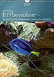 Riffbewohner - Bunte Fische, Anemonen und noch viel mehrAT-Version (Wandkalender 2019 DIN A4 hoch): Tropische Riffe bieten eine große Vielfalt an ... Farben (Planer, 14 Seiten ) (CALVENDO Tiere)