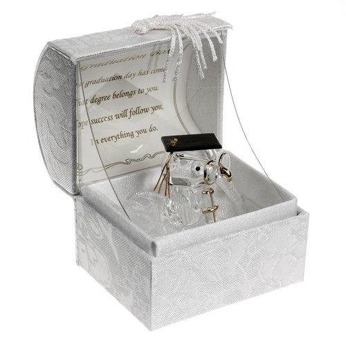 Bellissimo regalo di laurea ornamento ricordi Crystal Owl Teddy Passing esami regalo laurea celebrazione