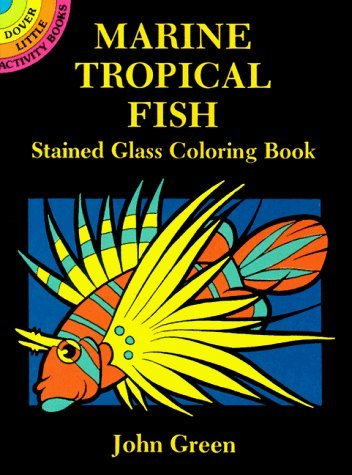 Marine Tropical Fish Stained Glass Coloring Book (Dover Stained Glass Coloring Book) by John Green (1-Oct-1994) Paperback -