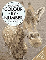 Relaxing Colour By Number For Adults by Clarity Media (2016-07-21)