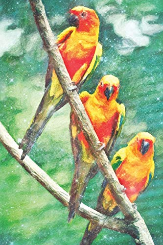 Notes: Sun Conure - Blank College-Ruled Lined Notebook (Student Animal Journals for Writing Journaling & Note-taking, Band 294) (Conure Parrot Sun)