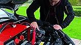 Einhell Batterie-Ladegerät CC-BC 30 (für Batterien von 3 bis 400 Ah, Ladespannung wählbar 6 V/12 V/24 V, Volt- und Amperemeter, Fernstartkabel, Tragegriff) Vergleich